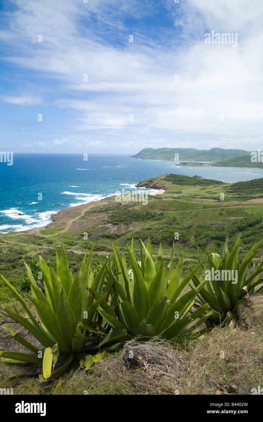 "GAP Punkt, St Lucia, ""West Indies"" Stockbild"