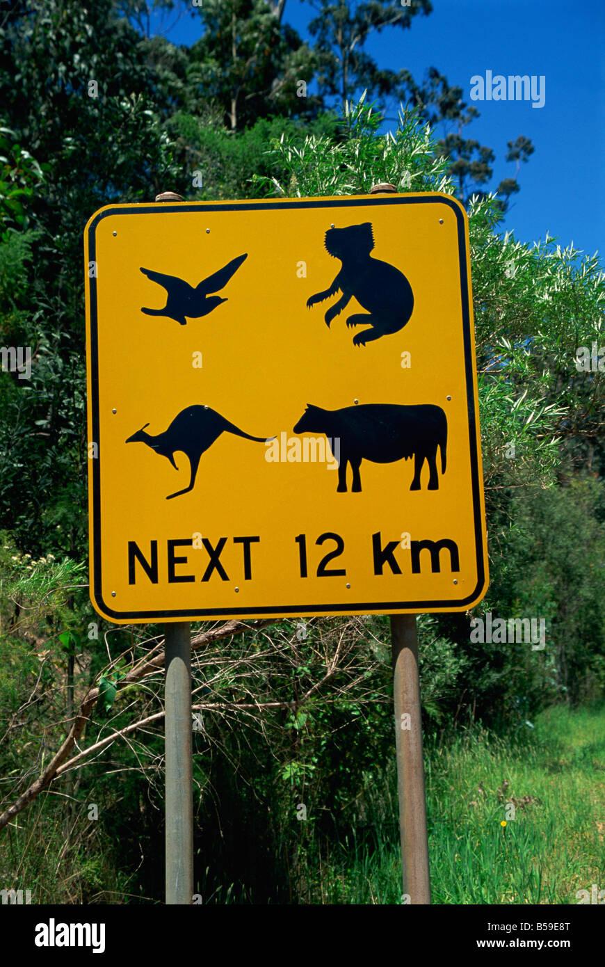 Typische Verkehrszeichen, Australien, Pazifik Stockbild