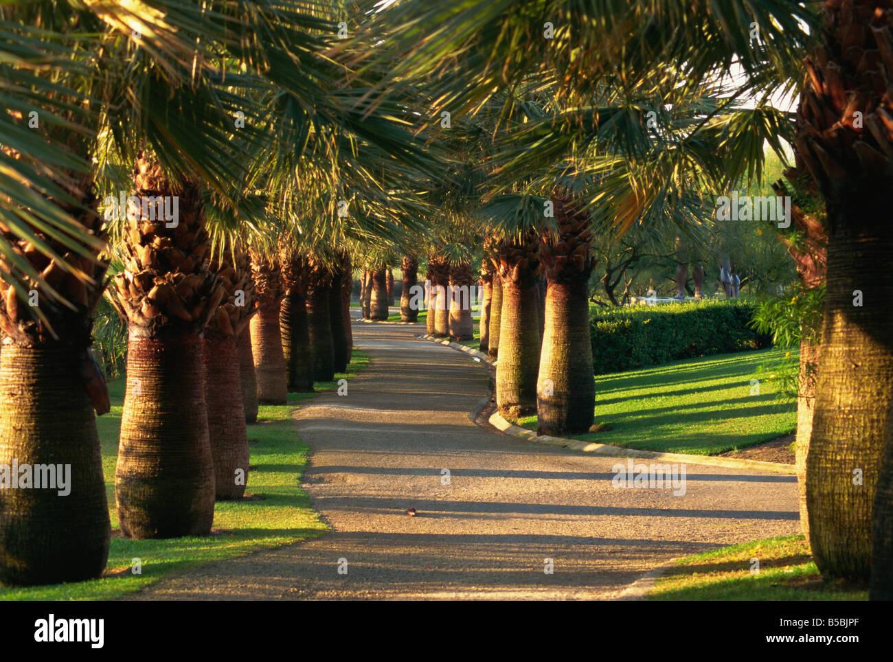 Parque de Los Pueblos de America, Motril, Provinz Granada, Andalusien, Spanien, Europa Stockbild