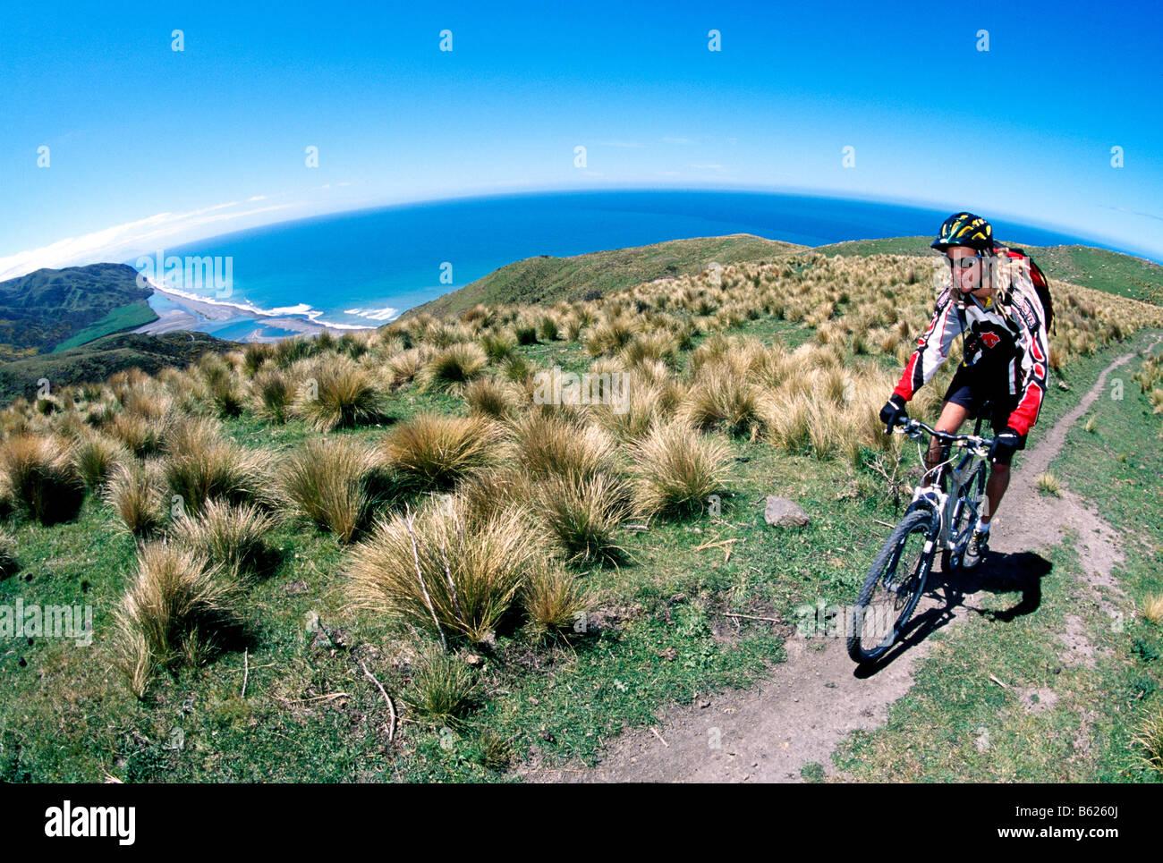 Mountainbiker, Cheviot, East Coast, Südinsel, Neuseeland Stockbild