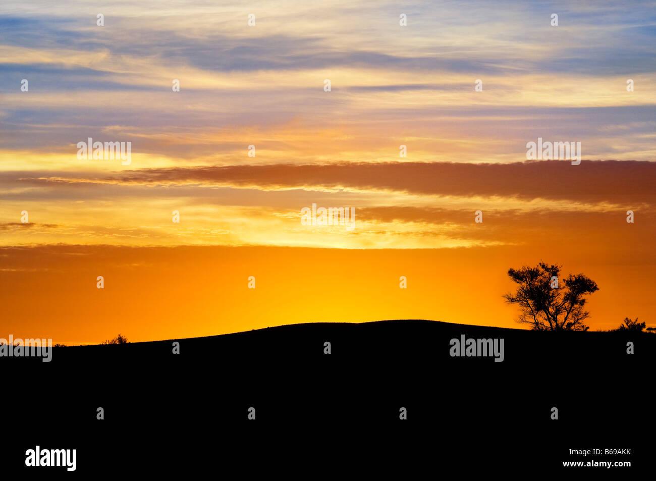 Sonnenuntergang Silhouette an Yunta South Australia Stockbild