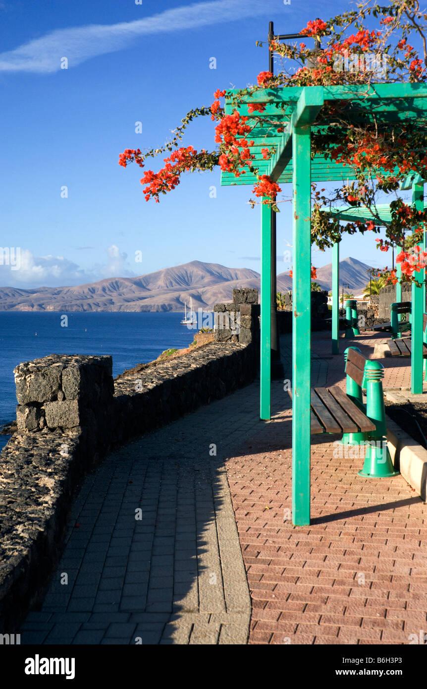 Wanderweg und Blumen Puerto del Carmen-Lanzarote-Kanarische Inseln-Spanien Stockbild