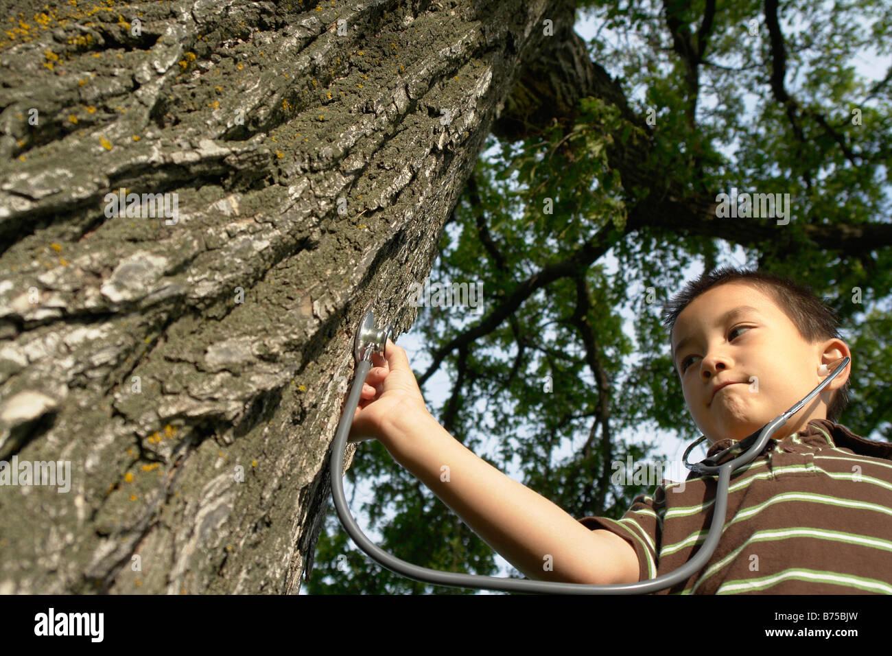 Sieben Jahre alter Junge mit Stethescope platziert auf Baum, Winnipeg, Kanada Stockbild