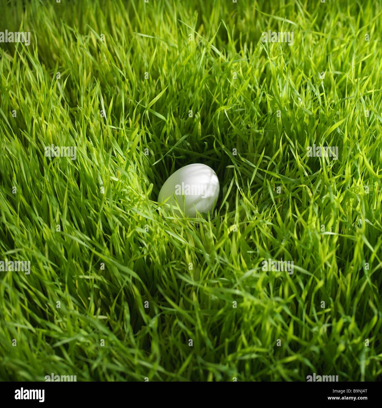 weiße Osterei in Rasen Stockbild