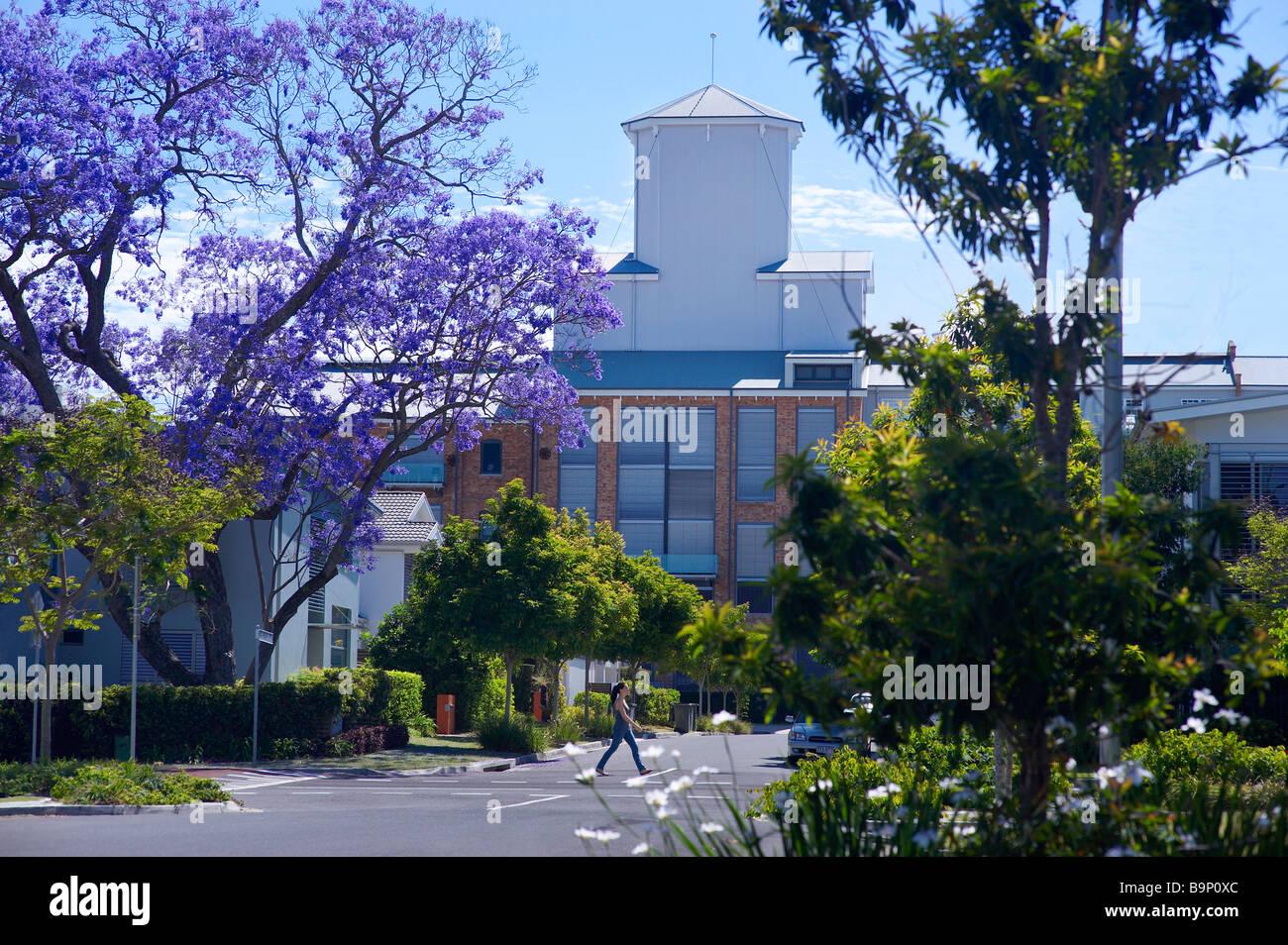 Zucker-Raffinerie-Apartments-Brisbane-Australien Stockbild