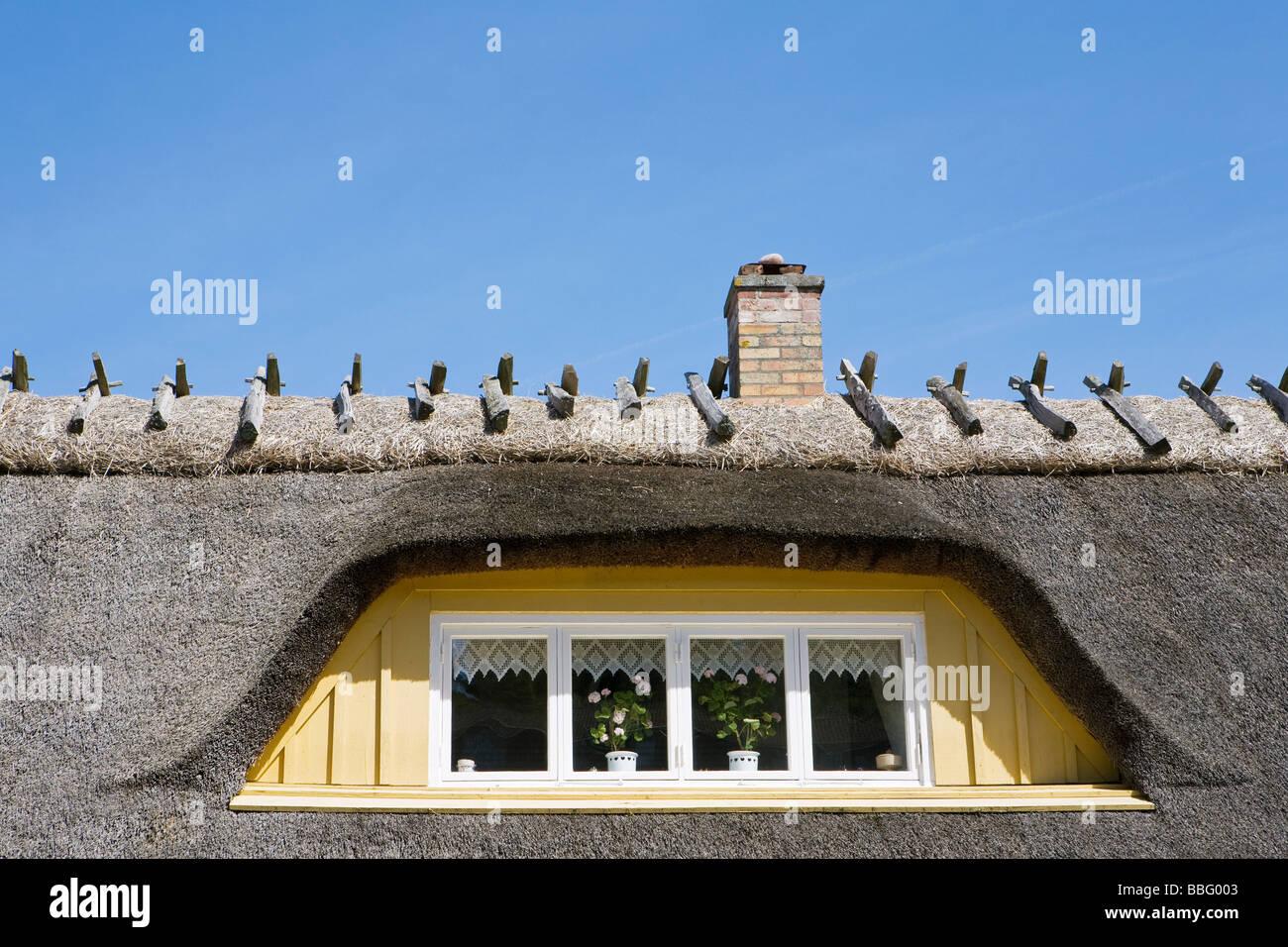 Thatched Dach eines Hauses Stockbild