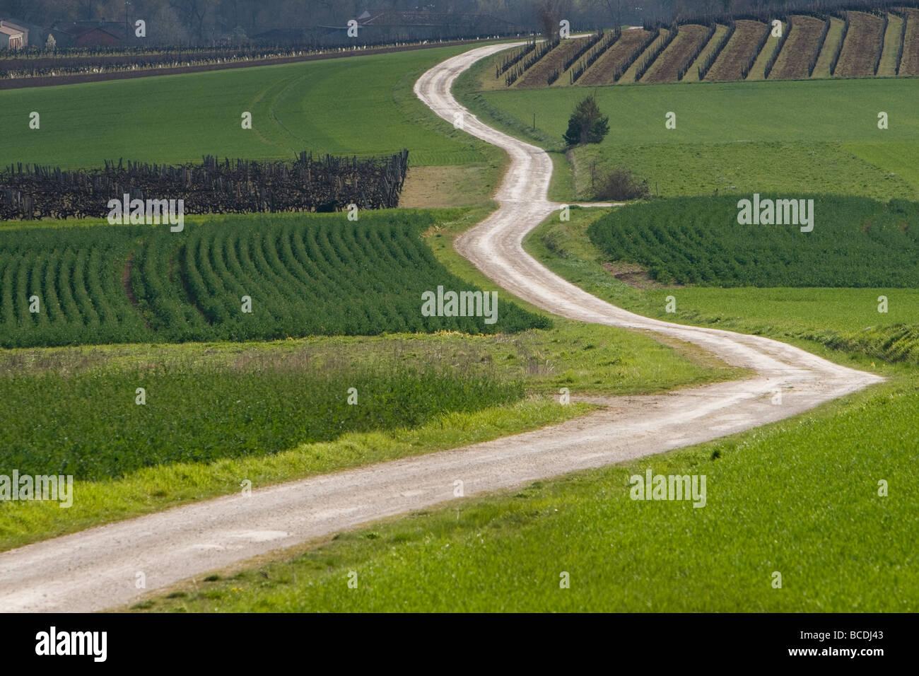 Landstraße in der Nähe von Rouillac Poitou Charente Frankreich Stockbild
