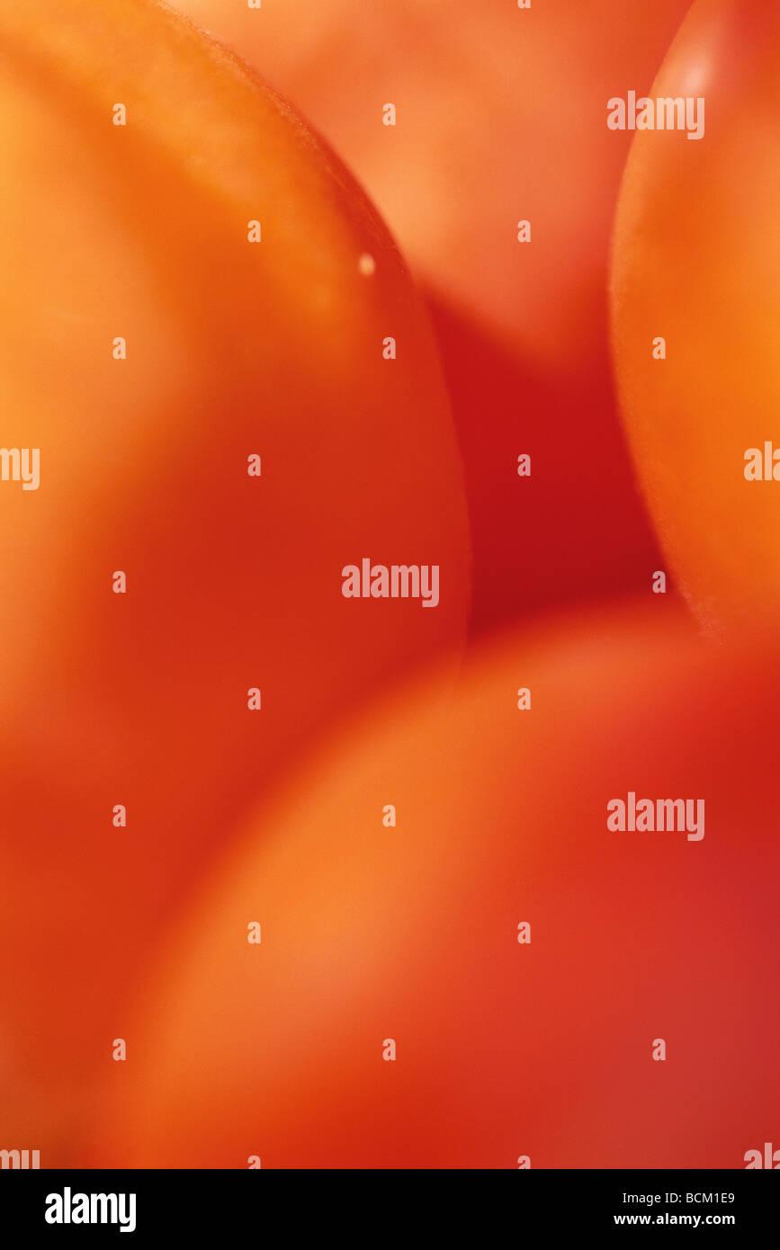 Tomaten, extreme close-up, full frame Stockbild