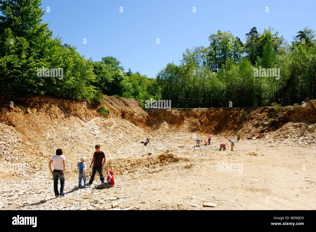 Fossil Suche Gebiet, Kalksteinbruch für Hobby Fossilien Sammler in der Nähe von Solnhofen im Naturpark Stockbild
