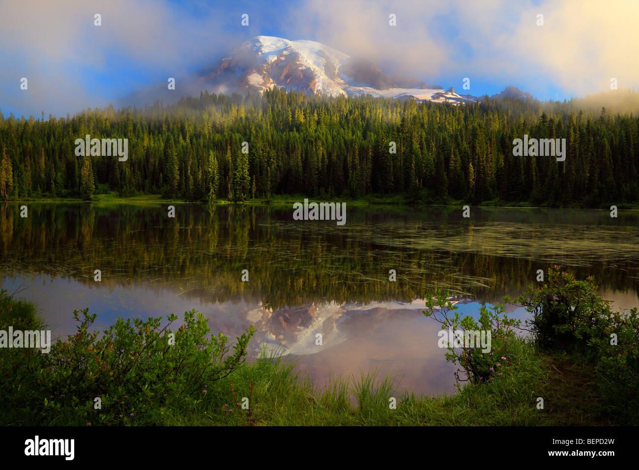 Misty Reflexion am Mount Rainier Reflection Lakes Stockbild