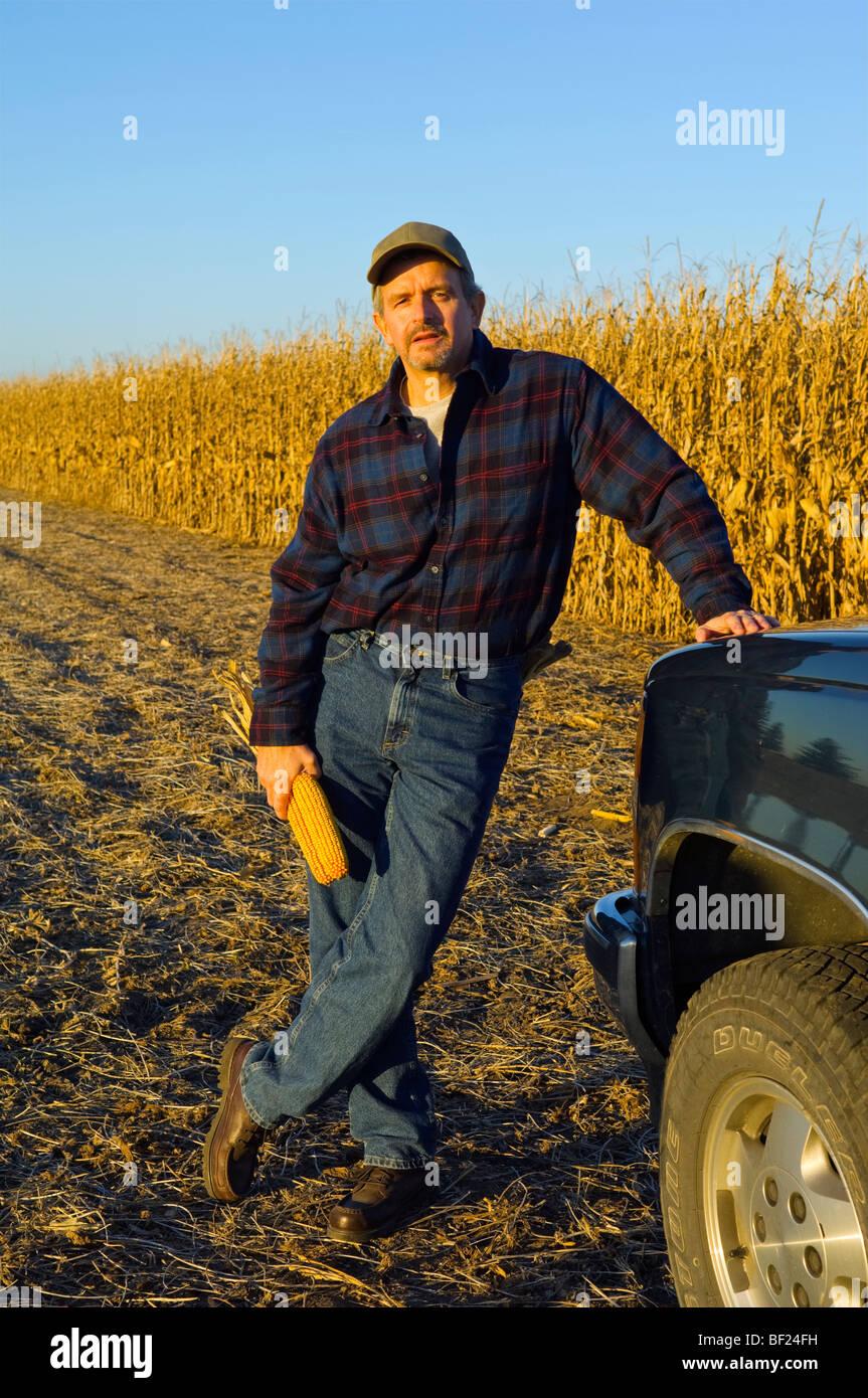 Ein Bauer mit Ähren in der Hand, stellt mit seinem Gebiet teilweise geernteten reife Getreide Mais im Hintergrund Stockbild