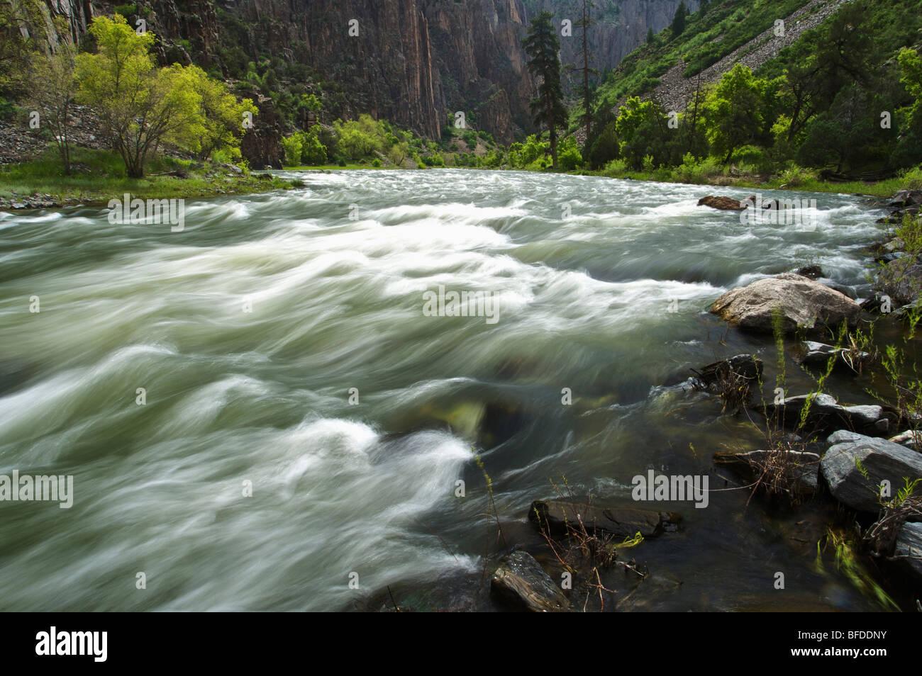 Der Gunnison River im Black Canyon Schlucht, Colorado. (Bewegungsunschärfe) Stockbild