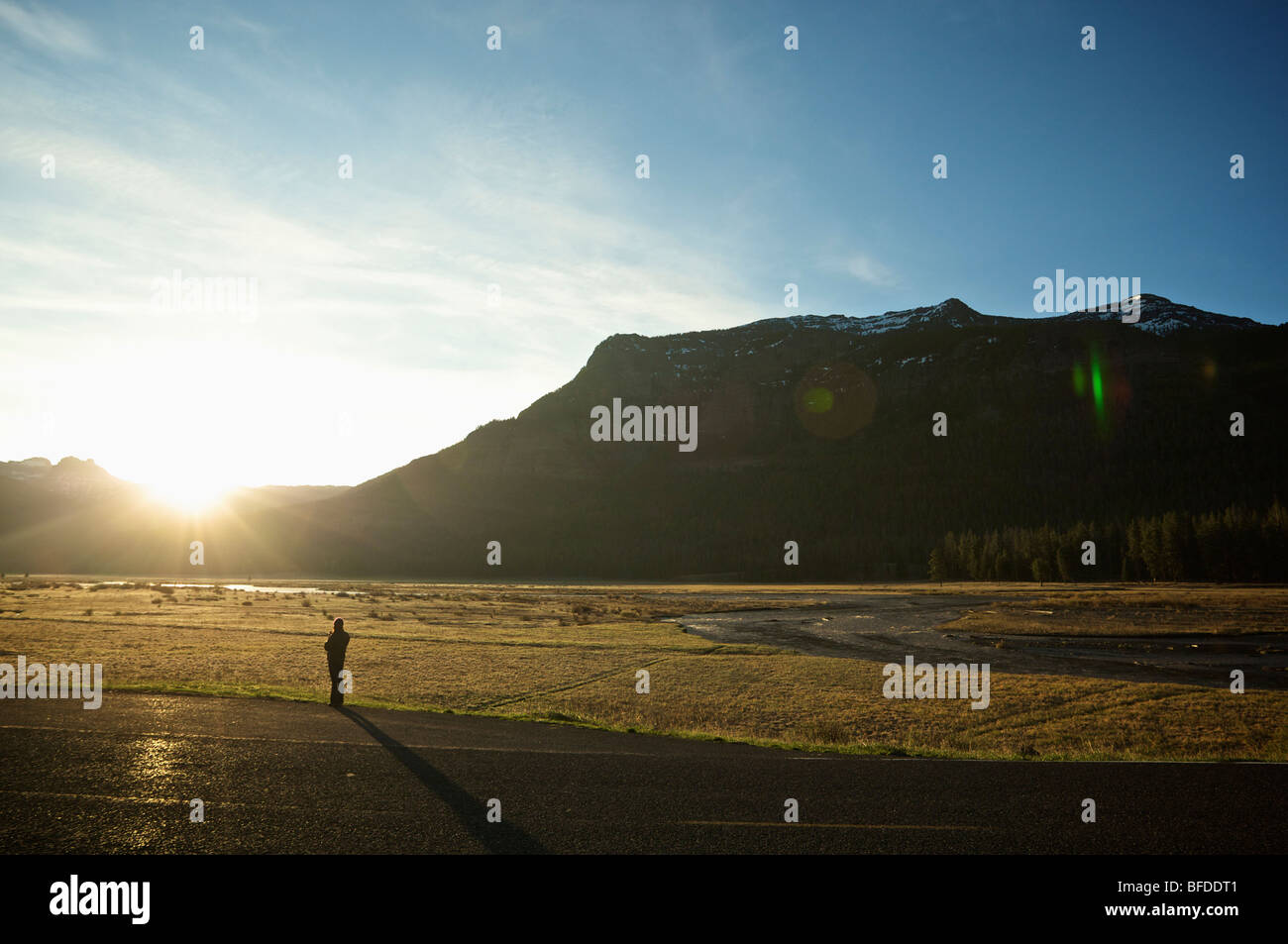 Eine Frau trinkt Kaffee und beobachtet den Sonnenaufgang von der Straße neben einem Feld im Yellowstone National Stockbild
