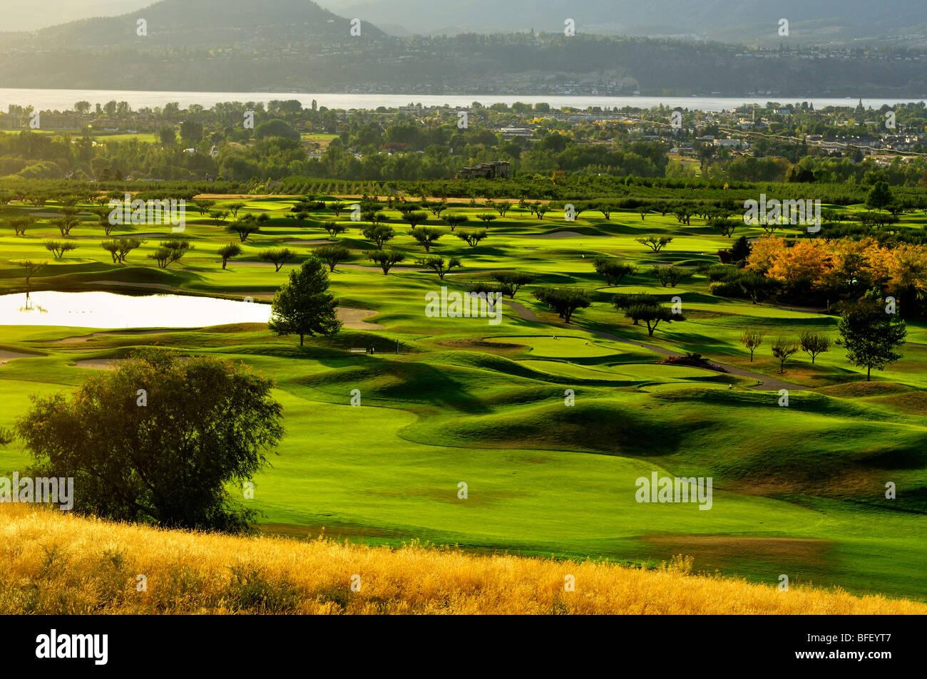 Obstgarten Green Golf Club in der Nähe von Kelowna, BC Stockbild