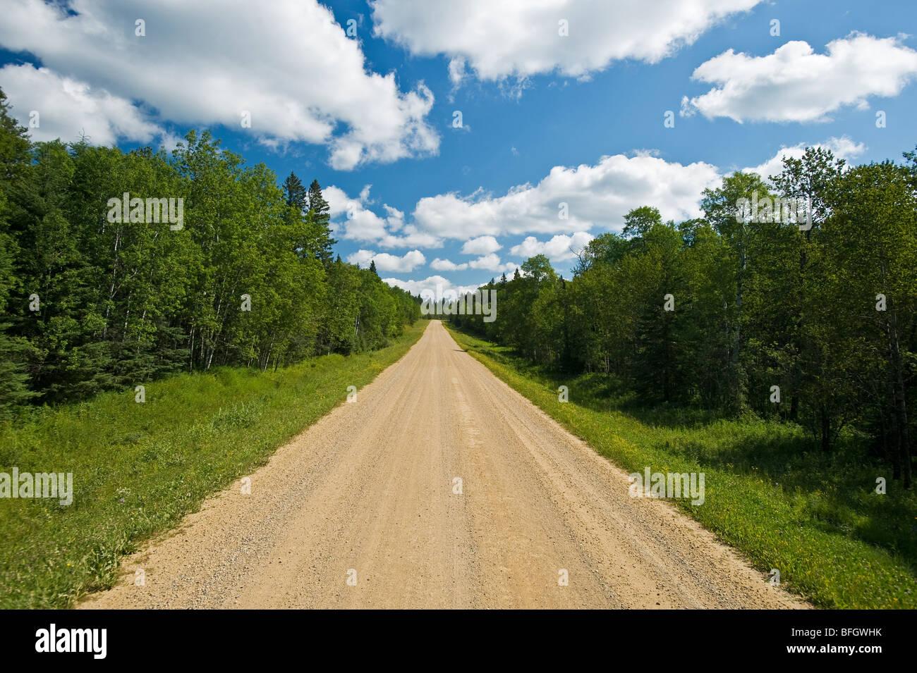 Landstraße durch borealen Wald. Duck Mountain Provincial Park, Manitoba, Kanada Stockbild