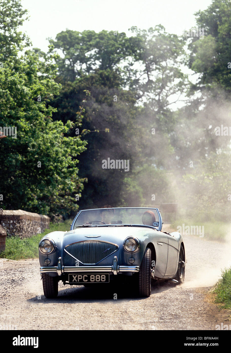Austin Healey 3000 1960 Stockbild