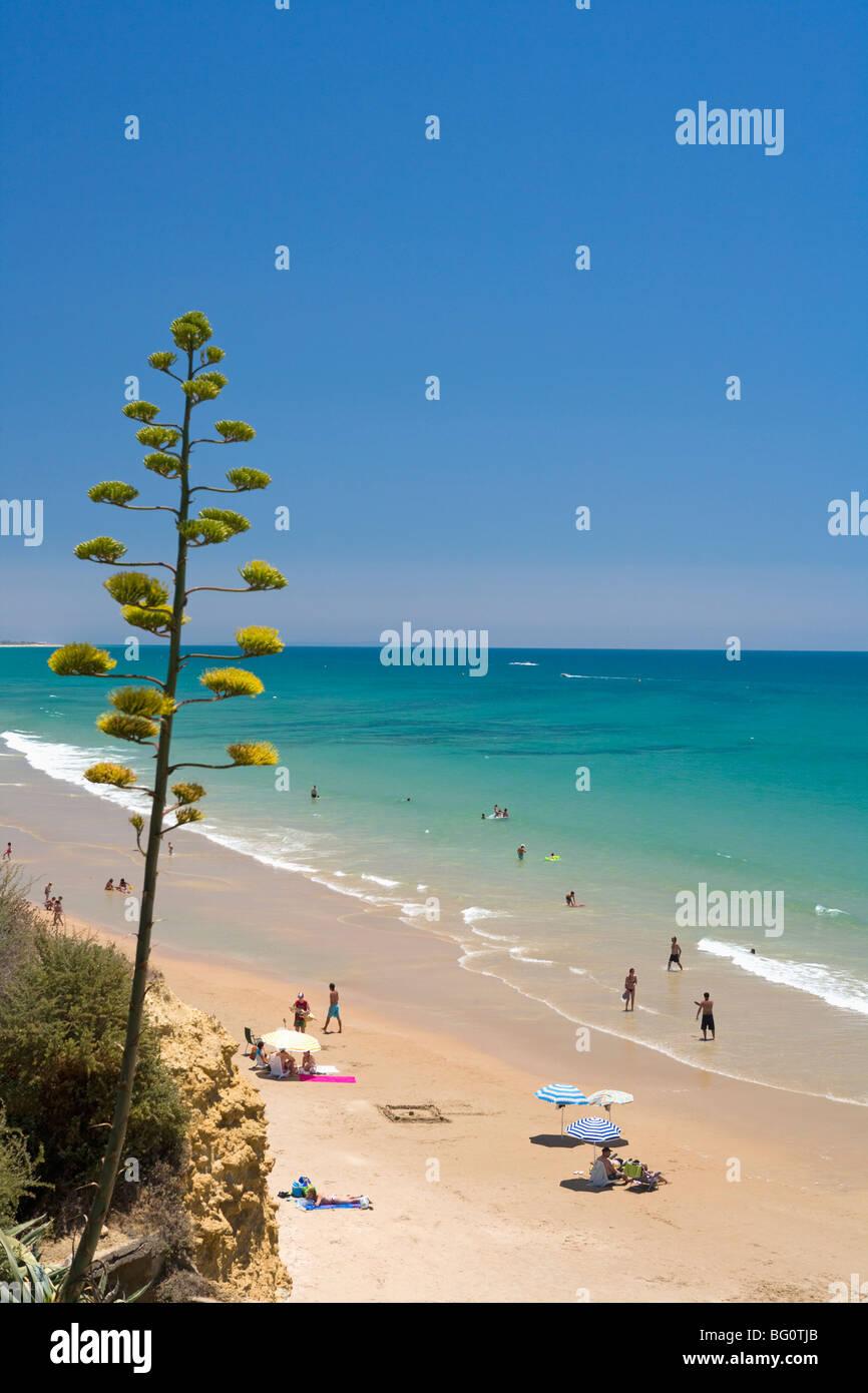 Conil De La Frontera, Costa De La Luz, Andalusien, Spanien, Europa Stockbild