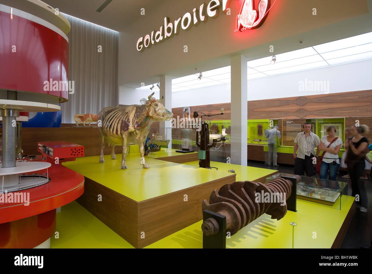 Das Deutsche Hygiene-Museum, DHMD, Zimmer 3 Essen und trinken, Glas Kuh, Dresden, Sachsen, Deutschland, Europa Stockbild