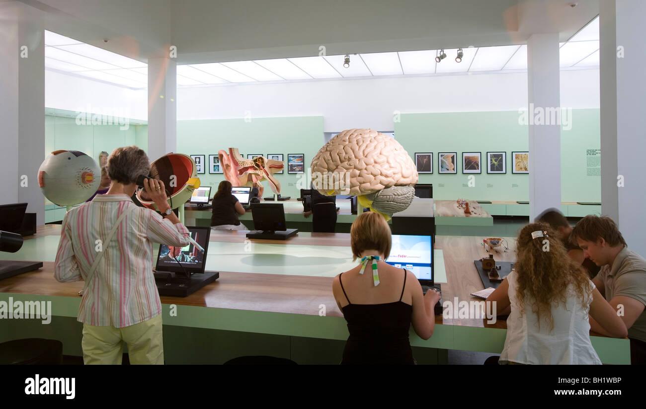Das Deutsche Hygiene-Museum, DHMD, Raum 5 erinnern, denken, lernen, Dresden, Sachsen, Deutschland, Europa Stockbild