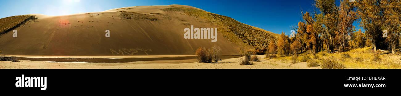 Der Rost Sand Dunes National Park und Konserve in Colorado, USA. Dies ist eine lange dünne Panorama-Foto der Stockbild
