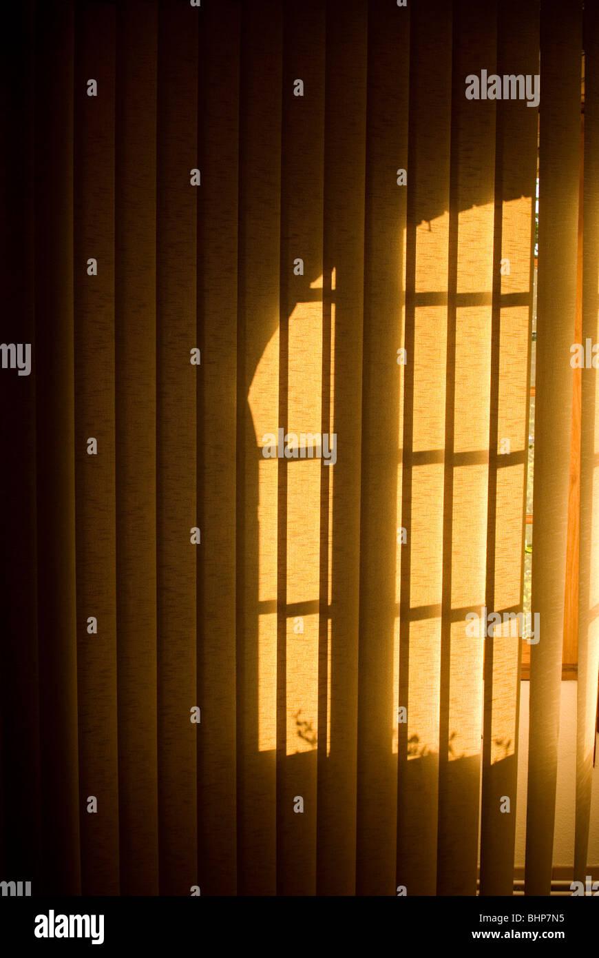 eine stimmungsvolle Bild von einem Fenster Schatten fallen auf vertikalen hängenden Jalousien Stockbild