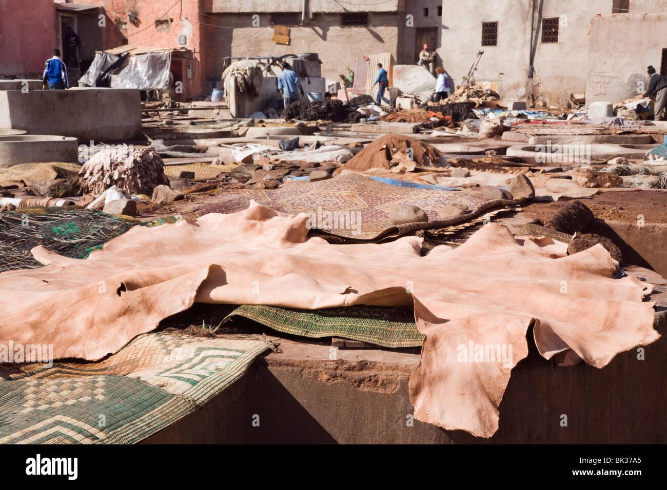 Bottiche und Lederhäute in einer alten Gerberei im Besitz von Genossenschaft der Familien in der Medina, Marrakesch, Stockbild