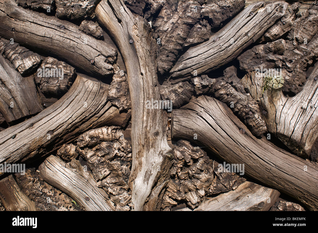 Holz- Muster - Johannes Gollop Stockbild