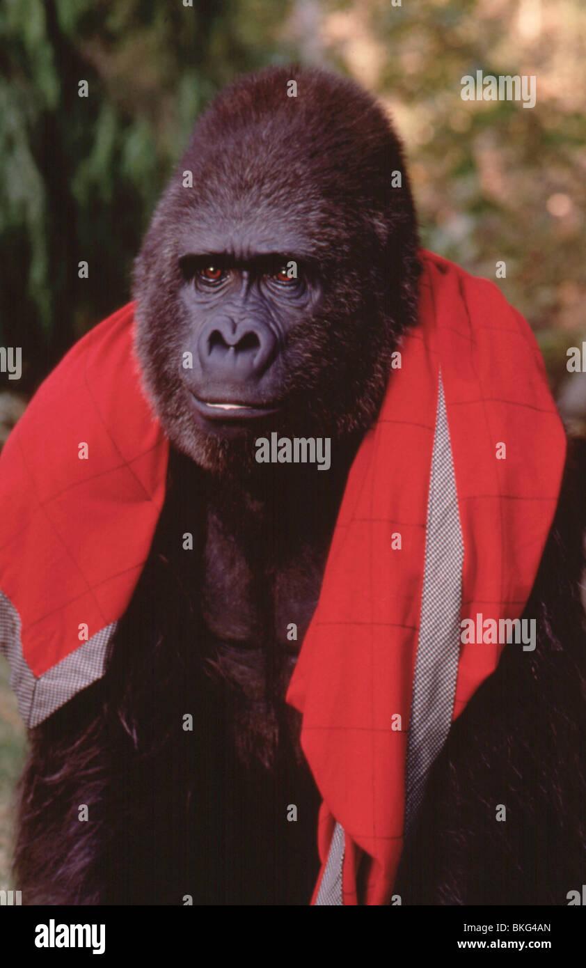 KUMPEL-1997 Stockbild