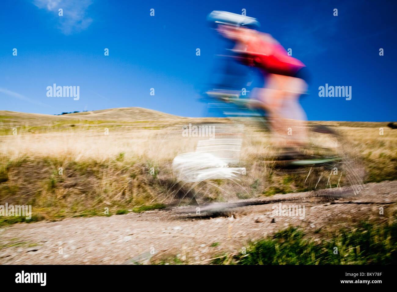 Ein weibliche Mountainbiker Pedale den Trail auf Mt. Sentinel, Missoula, Montana. Stockbild