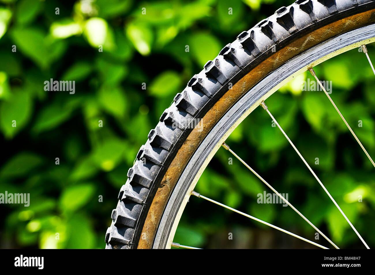 Mountain Bike Reifen Stockbild