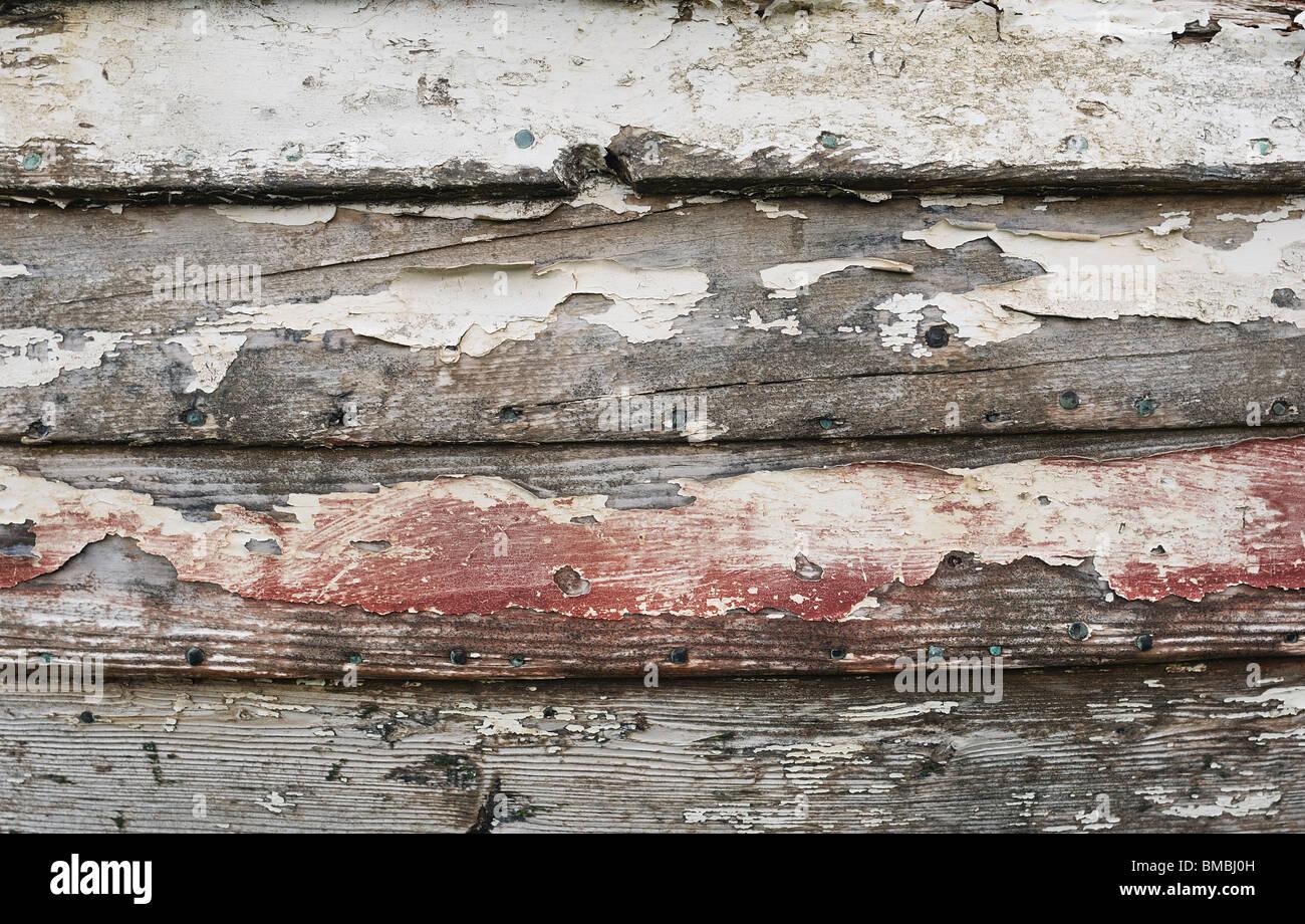 Morschem Holz - Johannes Gollop Stockfoto