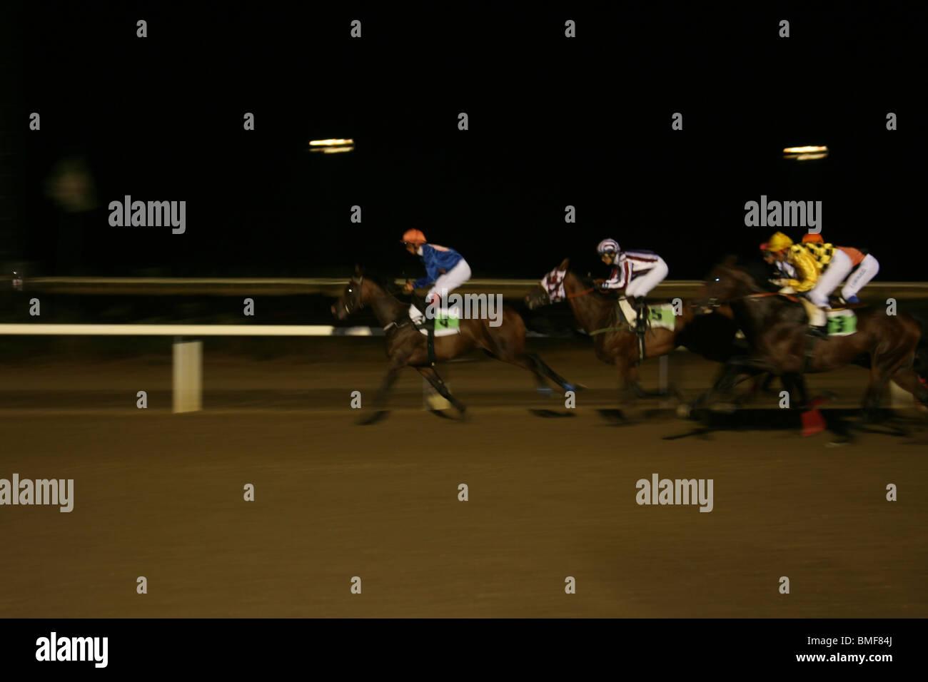 Rennen bis ins Ziel. Abend Zeit Pferderennen in Mijas Rennstrecke, Malaga, Costa Del Sol, Andalusien, Spanien. Stockbild