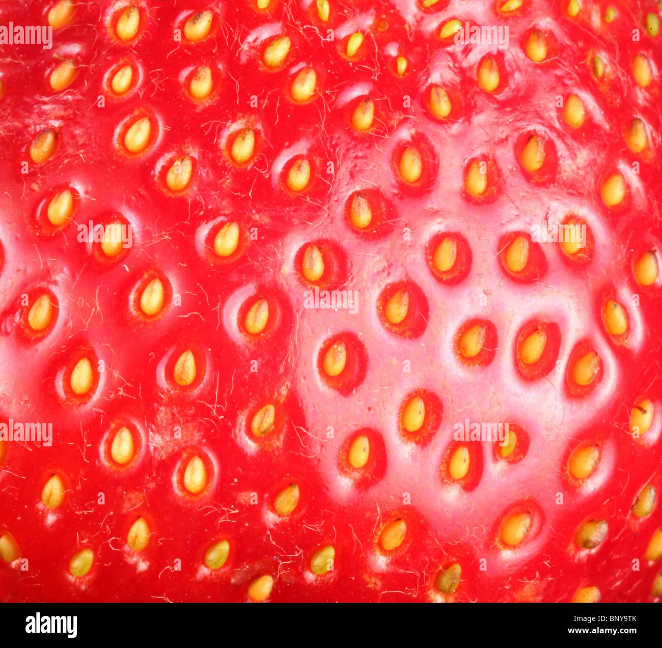 Erdbeer Texure. Makroaufnahme der Erdbeere. Stockbild