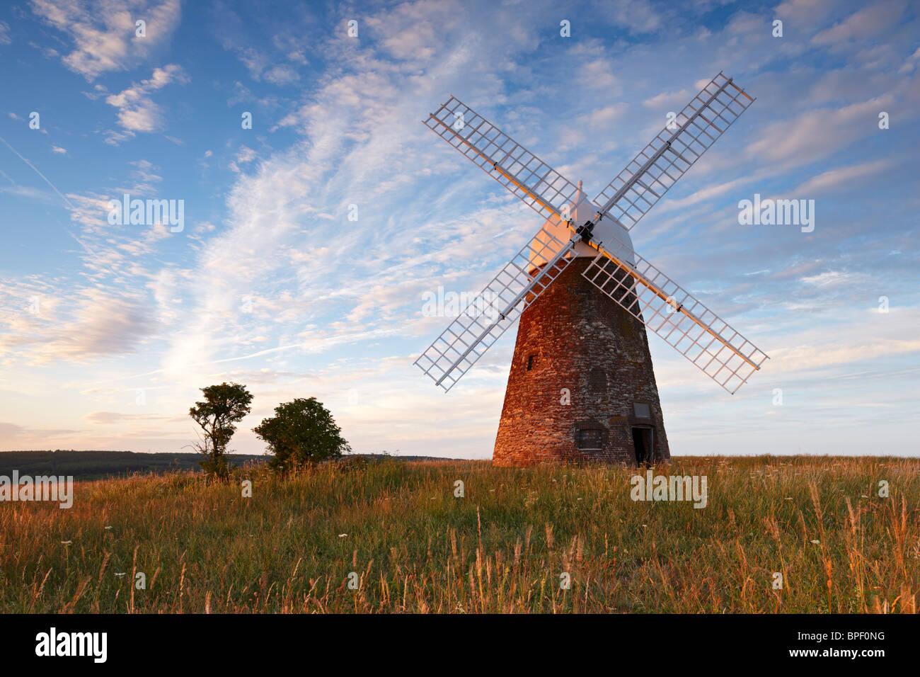 Halnaker Windmühle steht hoch oben auf den South Downs, umgeben von der wunderschönen Landschaft von Sussex Stockbild