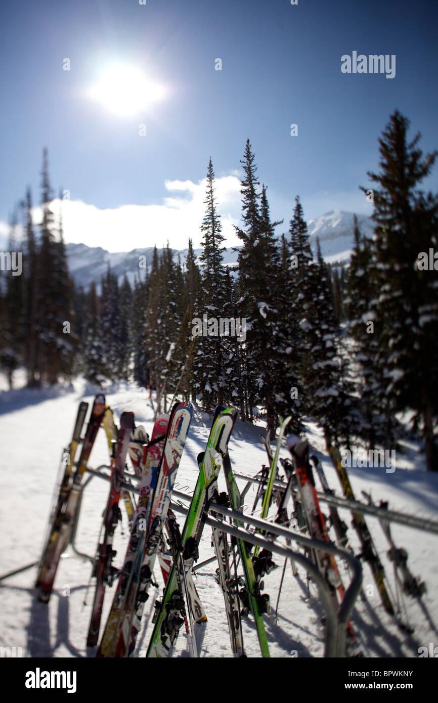 Alle Rack bis Ski im Skigebiet Alta. Stockbild