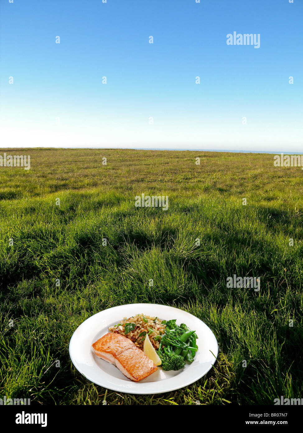 frischen Teller mit Abendessen auf dem Rasen außerhalb Stockbild