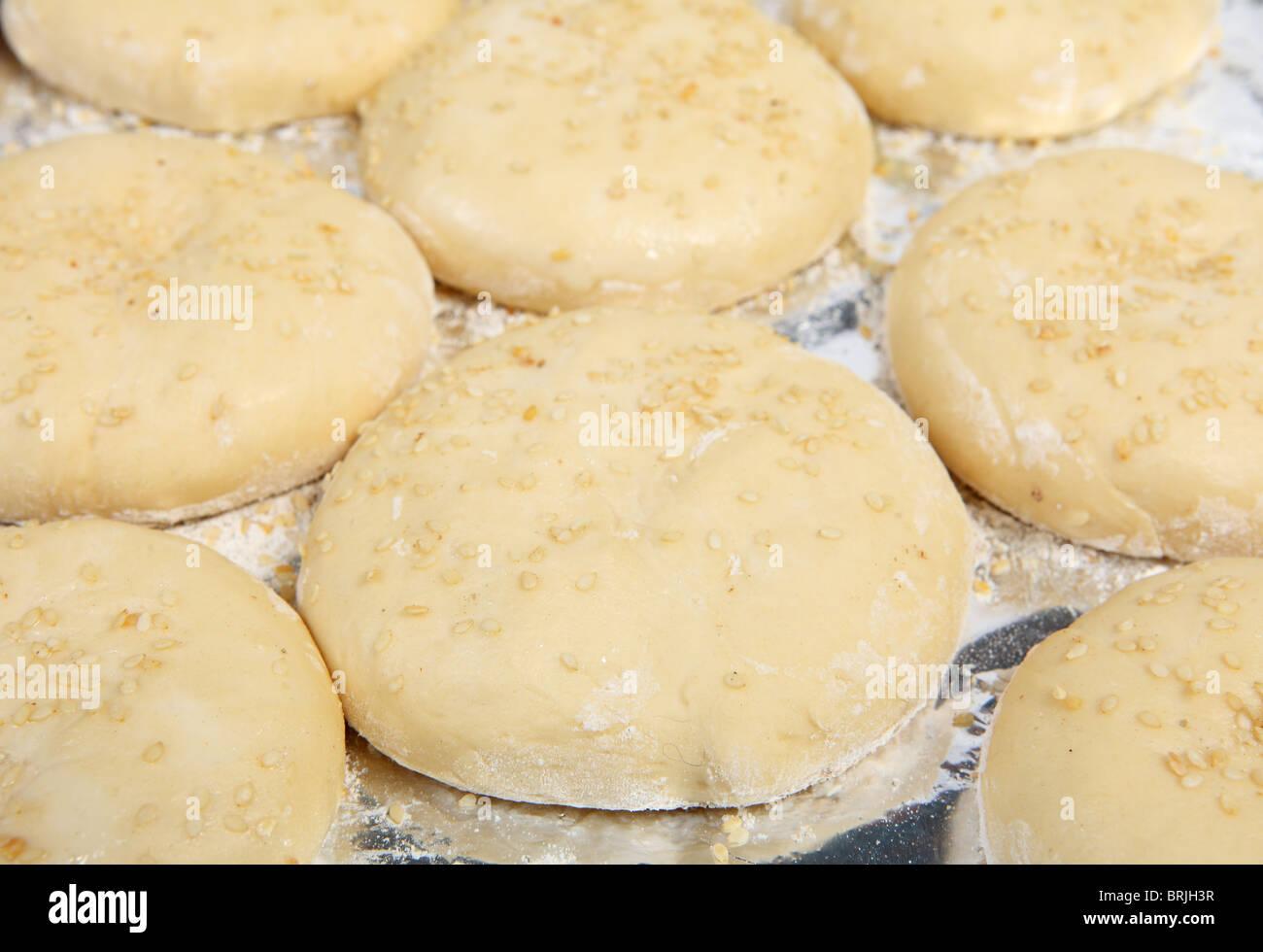 Ein Backblech voller fast gestiegen Burger Brötchen Brötchen, garniert mit Sesam Stockbild