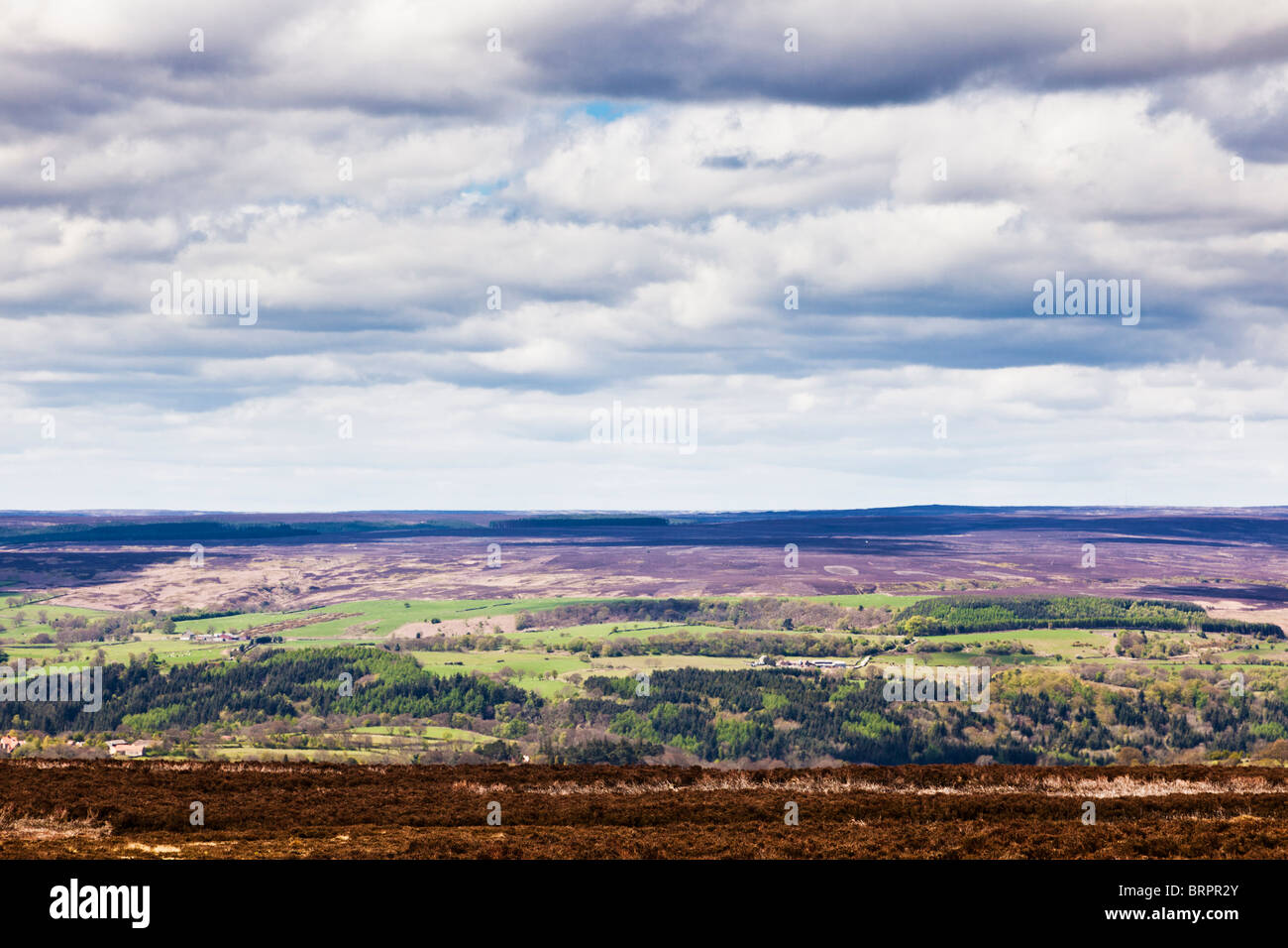 Typische Szene in North York Moors North Yorkshire England UK Stockbild