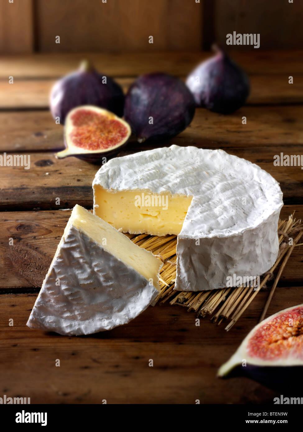 Traditionelle Coulommier französischer Käse Stockbild