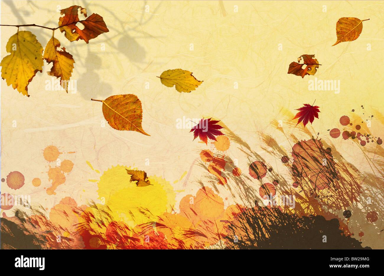 Herbstlaub in Abbildung Stockfoto