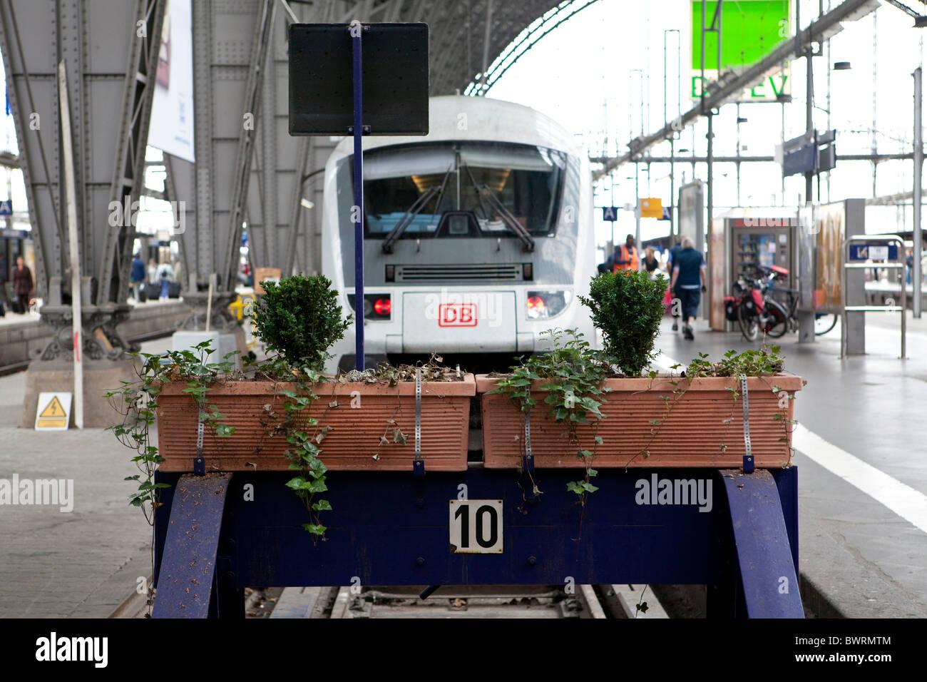 Ein Regionalzug an einer Plattform, Hauptbahnhof Frankfurt, Frankfurt Am Main, Hessen, Deutschland, Europa Stockbild