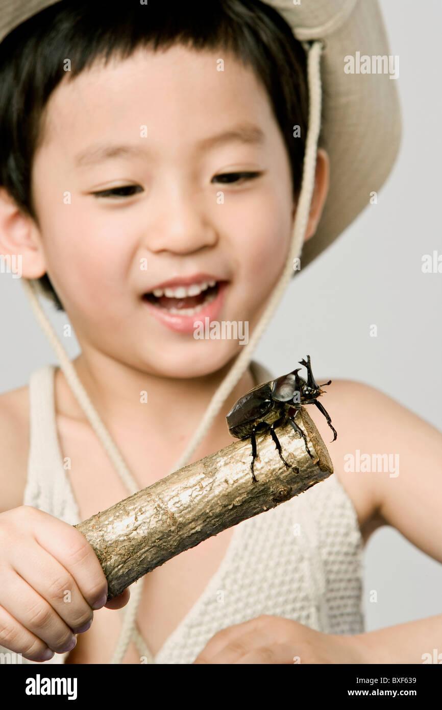 Ein kleiner Junge hält einen Stock mit einem Käfer drauf Stockbild