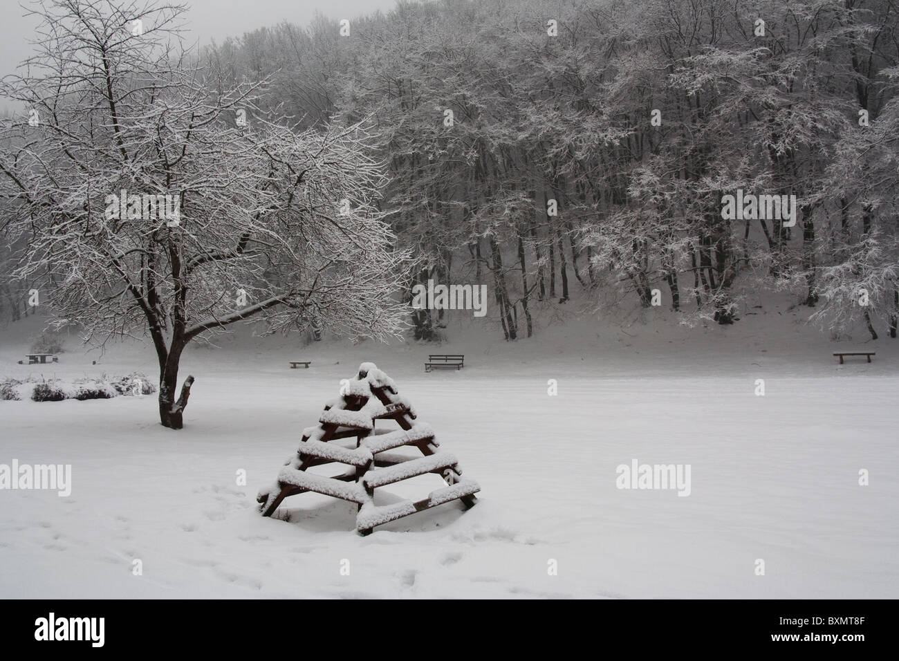 Eine verschneite Szene in Germia Park, einem öffentlichen Bereich außerhalb Prishtina im Kosovo Stockbild