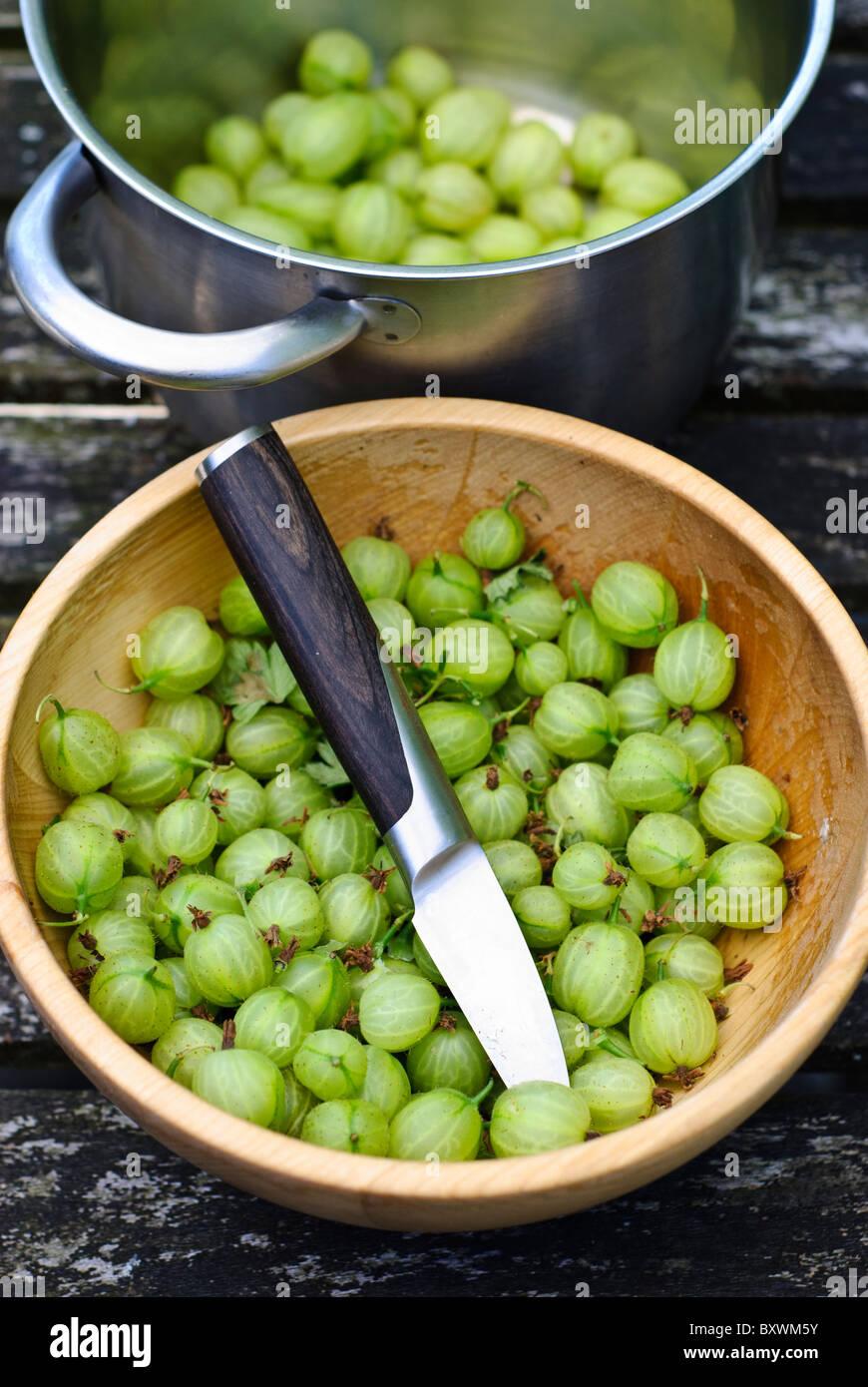 Frische einheimische Stachelbeeren vorbereiten, Kochen Stockbild