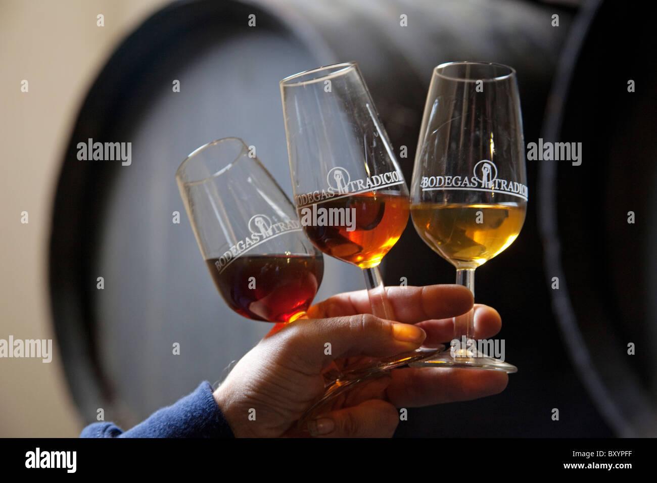 Catavinos y Vinos de Bodegas Tradicion Jerez De La Frontera Cadiz Andalusien España Weinkeller Andalusien Spanien Stockbild