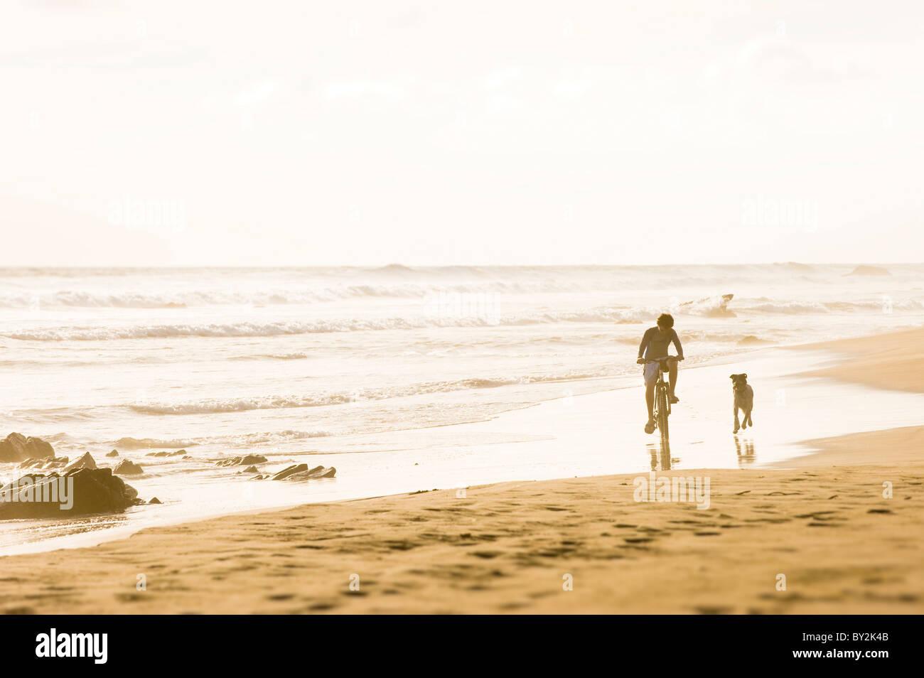 Ein Junge reitet sein Fahrrad, während ein Hund an einem Sandstrand in Mexiko entlang verläuft. Stockbild