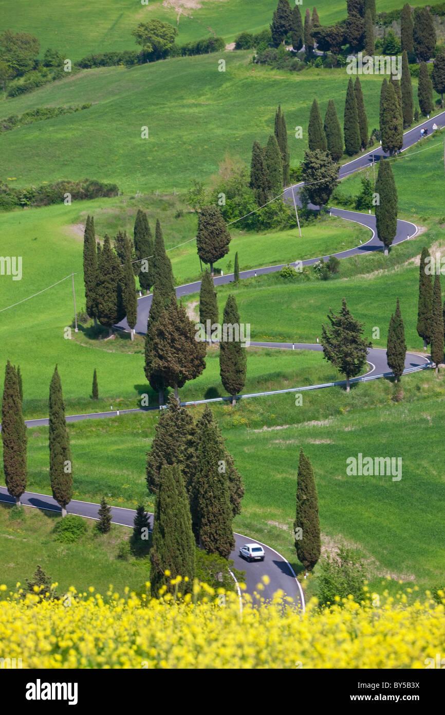 Kurvenreiche Straße, Monticchiello, Toskana, Italien Stockbild