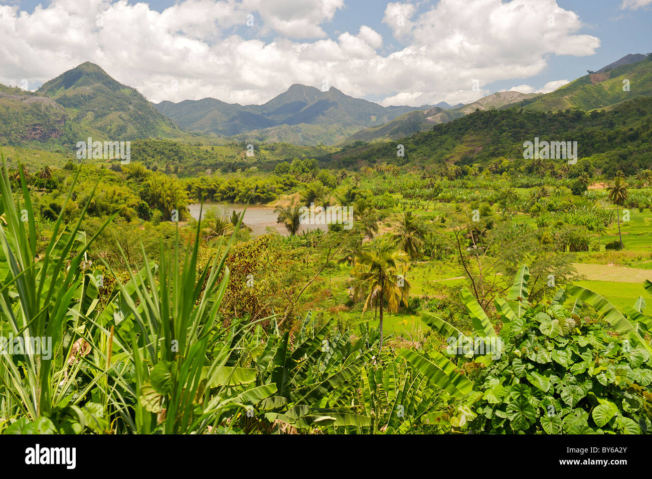 Blick auf den Lokoho River und tropische Landschaft entlang der Straße Sambava Andapa Provinz Antsiranana, Stockbild