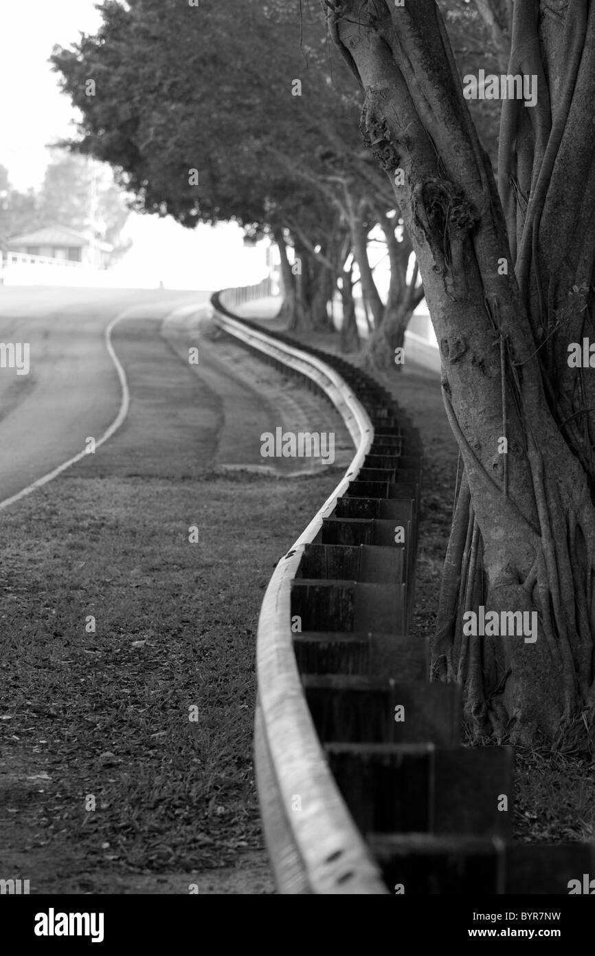 Schwarz und weiß von Straße mit geschwungenen Geländer und Bäume Stockbild