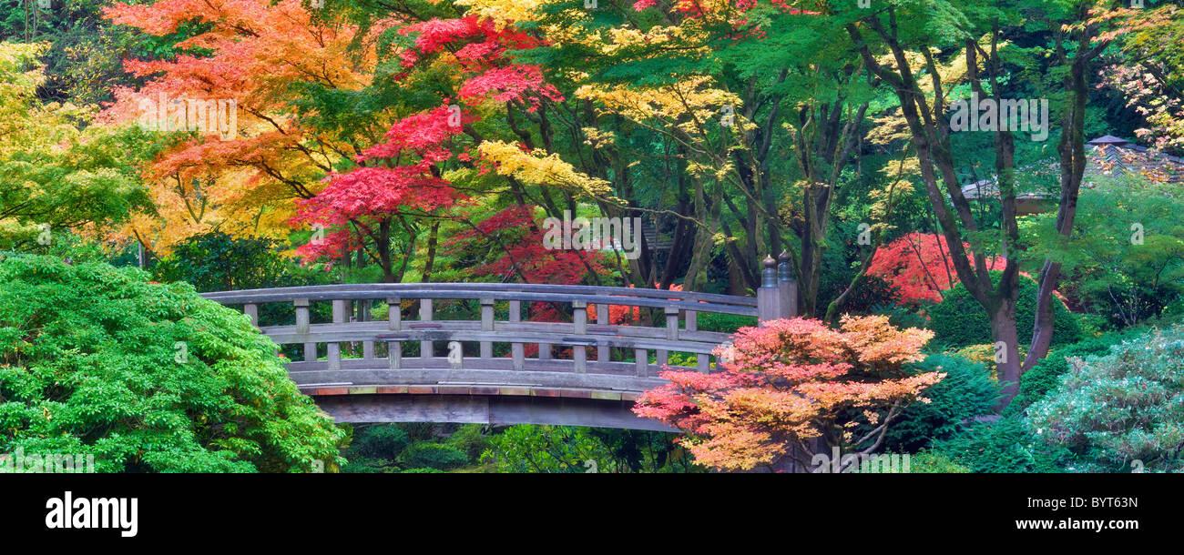 Portland Japanese Gardens mit Brücke und Herbst Farben. Oregon Stockbild